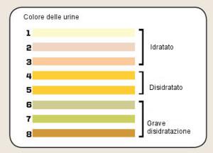tabella_informazioni_mediche21